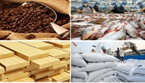 Việt Nam xuất siêu nông lâm thủy sản hơn 6 tỷ đô trong 8 tháng đầu năm 2019