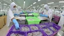 Giám sát chuỗi sản xuất tôm an toàn phục vụ xuất khẩu