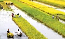 Quy hoạch nông nghiệp, nông thôn vùng Đồng bằng sông Cửu Long đến năm 2020, tầm nhìn đến năm 2030 trong điều kiện biến đổi khí hậu
