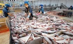 Quy hoạch nuôi, chế biến cá tra vùng Đồng bằng sông Cửu Long đến năm 2020