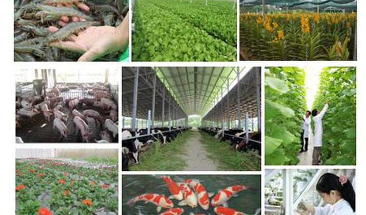Tái cơ cấu nông nghiệp đang đi đúng hướng