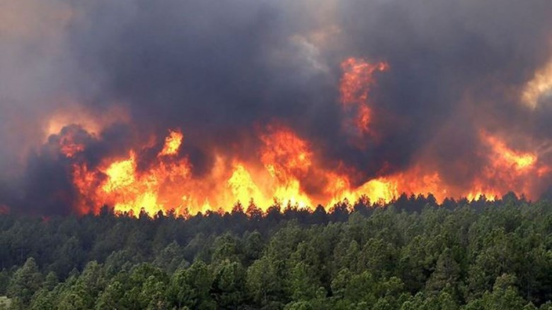 Những địa phương đang ở cấp cảnh báo cháy rừng cực kỳ nguy hiểm